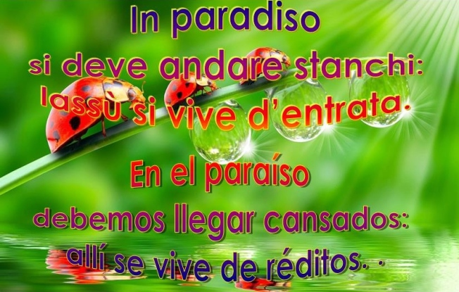 in-paradiso-en-el-parais