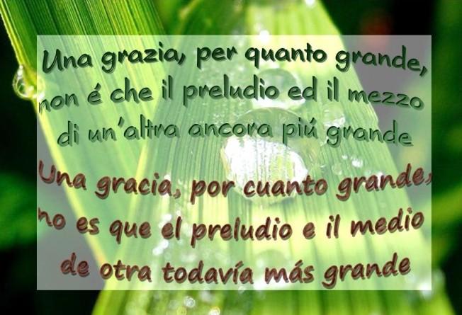 una-grazia-una-gracia1