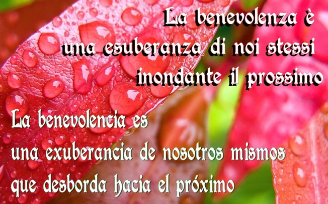 la-benevolenza-la-benevolencia