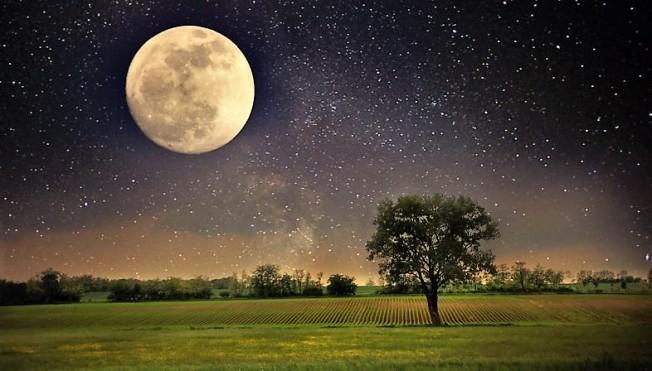 La bellezza del creato, un eccesso dell'amore di Dio!
